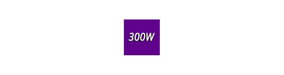 300 - 400 Watts