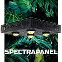 SpectraPANEL