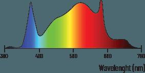spectrum zeus 600w