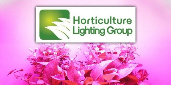 Horticulture Lighting Group: HLG lights are on GrowLED