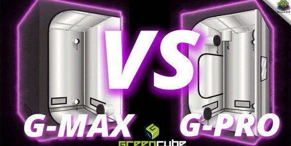 What are the differences between the G-MAX and G-PRO Boxes from GreenCube?