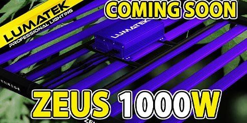 When will the ZEUS 1000W PRO Lumatek be available?